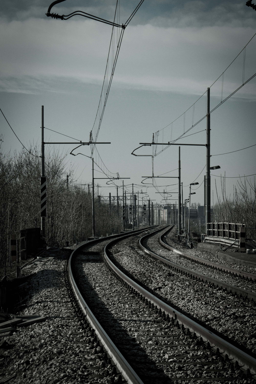 _MG_4815