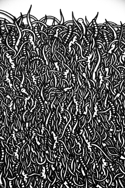 tela-vermi-1-detail-2